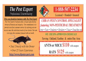 Deals  Discounts  PEST EXPERT COUpON1 111 300x213 21 FREE GIFTS !