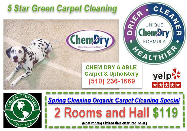 ORGANIC CARPET CLEANING  OAKLAND, BERKELEY, EASTBAY -10% Off – Upholstery Cleaning